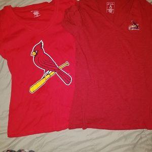 Cardinal bundle
